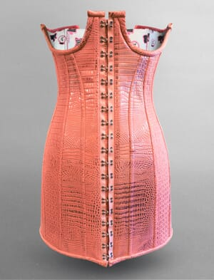 The Skinny Confidential Underbust Corset Dress